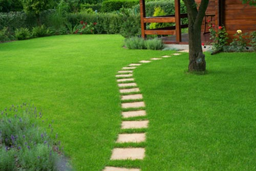 Engazonnement de jardin et ext rieurs besan on morteau for Devis engazonnement